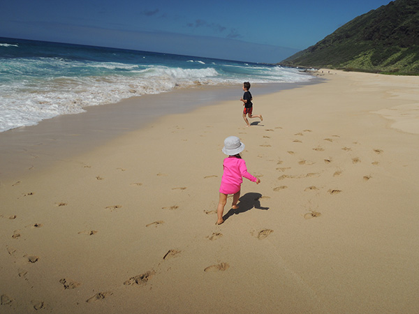 Hawaiiphotodiary2014_13