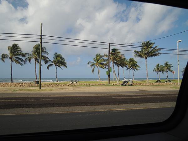 Hawaiiphotodiary2014_8