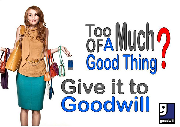 too-much-give-to-goodwill