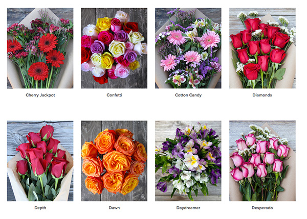 bouqs-flowers-3